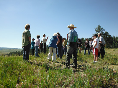 san juan forest partnership in Pagosa Springs